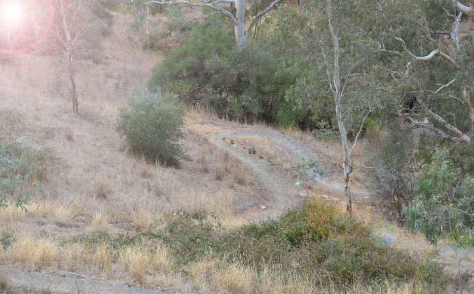 Sturt Gorge Recreational Trails